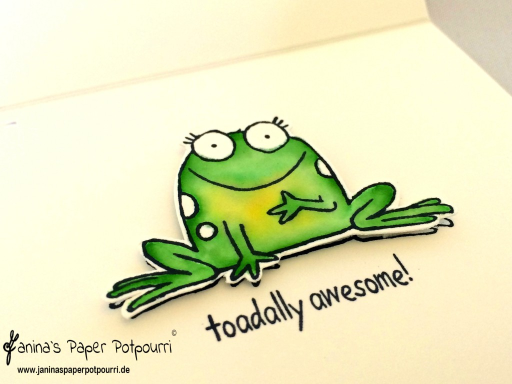 jpp - toadally in love with frogs 7